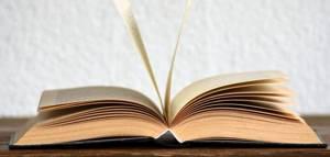 Прекращение исполнительного производства — Юридические советы