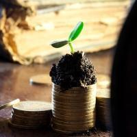 Льготу по налогу на имущество физических лиц — Юридические советы