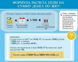 Оплата пени за услуги по предоставлению электроэнергии — Юридические советы